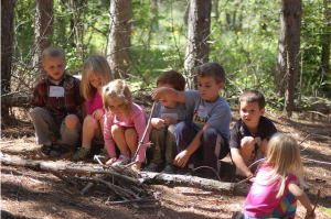 Nature Camps Summer Course