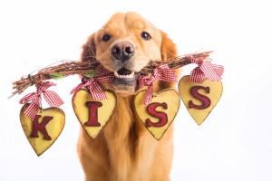 Crafty Ways to Celebrate Valentine's Day