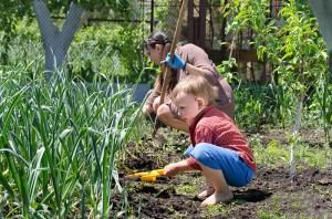 Turning Kids Into Gardeners With Their First Private Plot