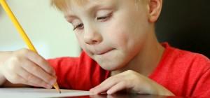Happy boy doing homework