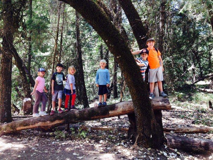Adventure camps & classes