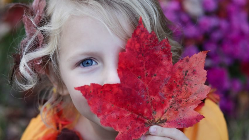 5 Fun Fall Activities